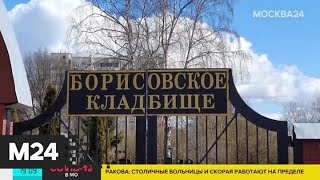 РПЦ призвала верующих молиться дома и не посещать храмы - Москва 24