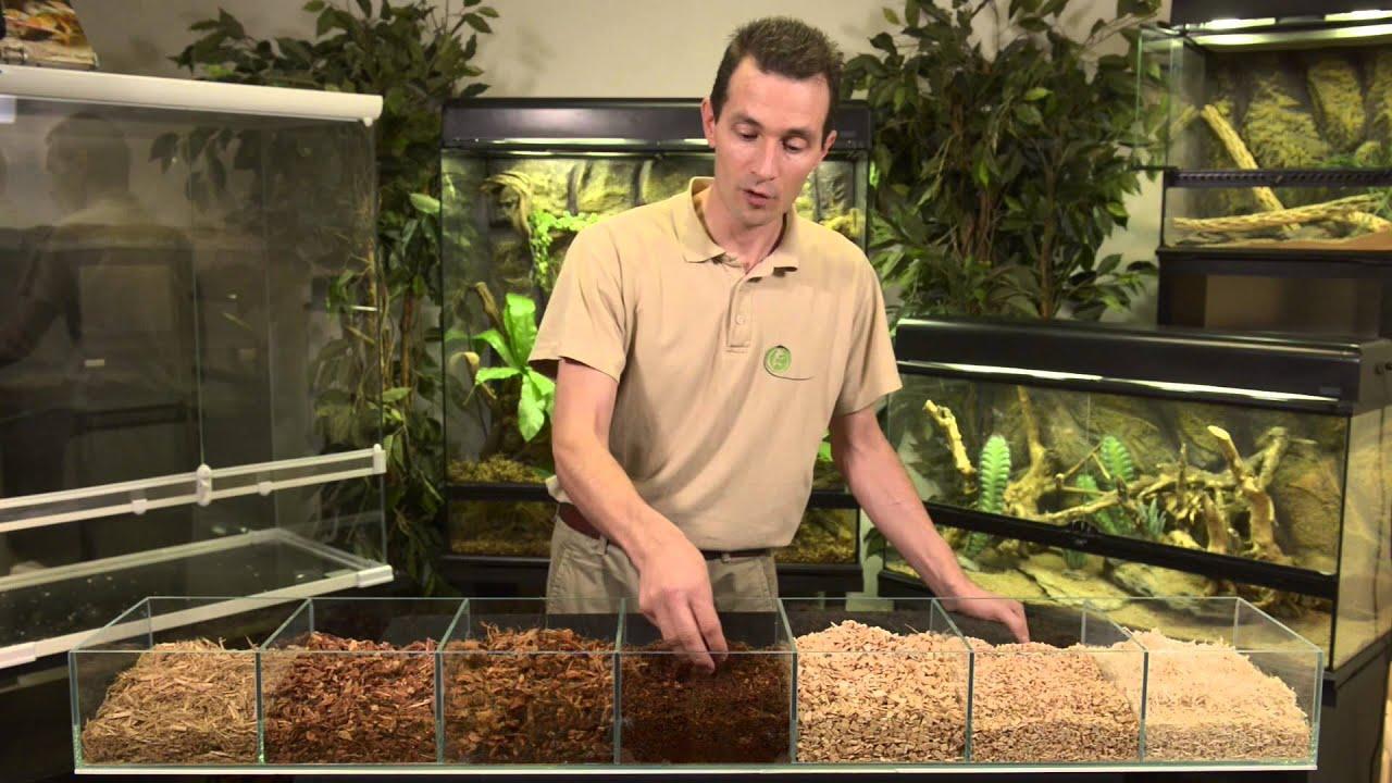 substrat pour terrarium tropical