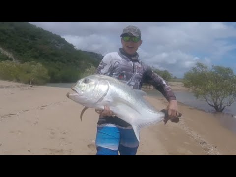 20kg GT Fishing Townsville, Land Based.