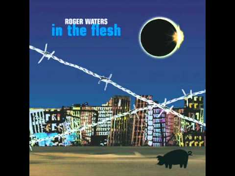Pink floyd Roger waters 11 comfortably numb In The Flesh (Live)(CD2