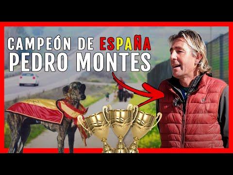 Hoy en Tertulia Galguera recibimos a Pedro Montes el 3 veces campen de Espaa |Galgos Los Churritos