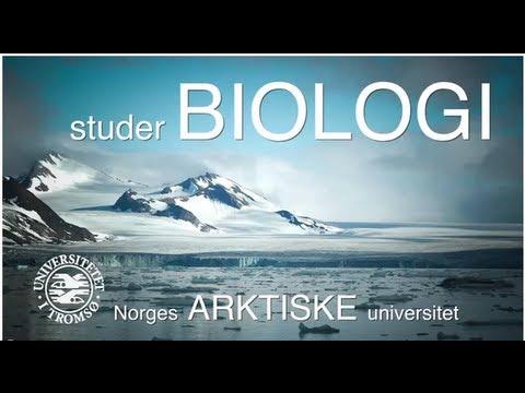 Studer BIOLOGI ved Norges ARKTISKE universitet.