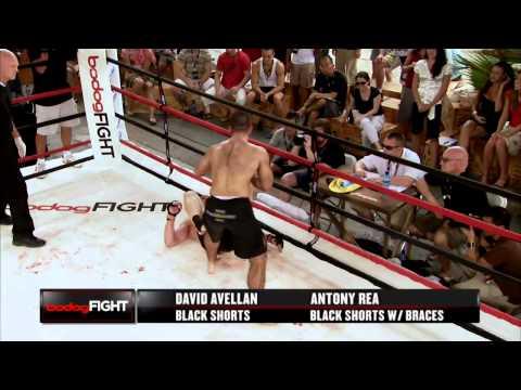 David Avellan vs Antony Rea MMA Fight (HD)
