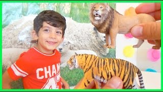 Learn Animals Sounds And Names For Children Kids And Babies | Learning Wild Animals
