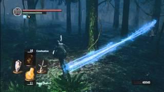 Dark Souls: Great Soul Farming Area