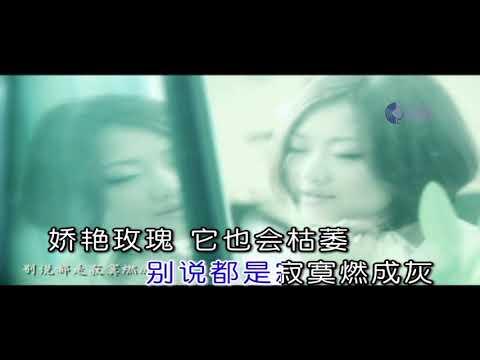 MV 男人酒女人泪 ~ 陈瑞