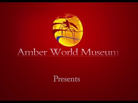 TerraTreasures A presentation by the Amber World Museum Dominican Republic