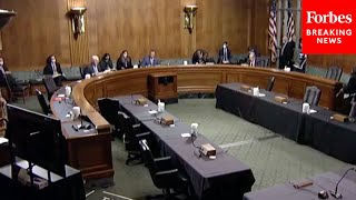 Senate Judiciary Committee Holds Hearing On Essential Immigrant Workers