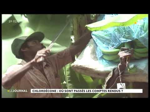 Chlordécone: le Cran et l'association Vivre déposent plainte après la disparition d'archives au ministère de l'Agriculture