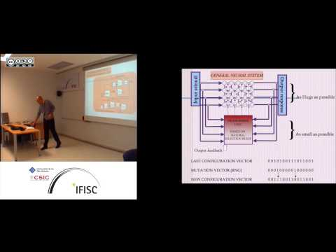 Hardware Implementation of Neural Networks