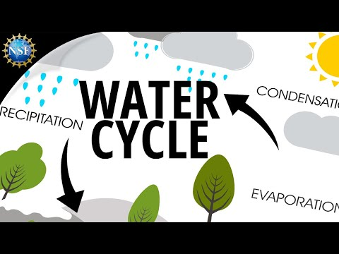 The Water Cycle - YouTube