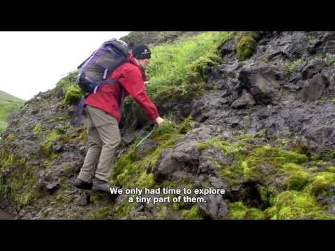 Discovering Arctic Plants: Expedition Arctic