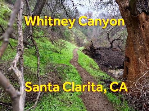 Whitney Canyon Hike with Waterfalls - Santa Clarita, CA