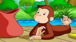 好奇的喬治 🐵Curious George Chinese 🐵好奇猴喬治逆流而上 🐵第1季 🐵动画片 🐵卡通 🐵动画 🐵Cartoon 🐵Animation