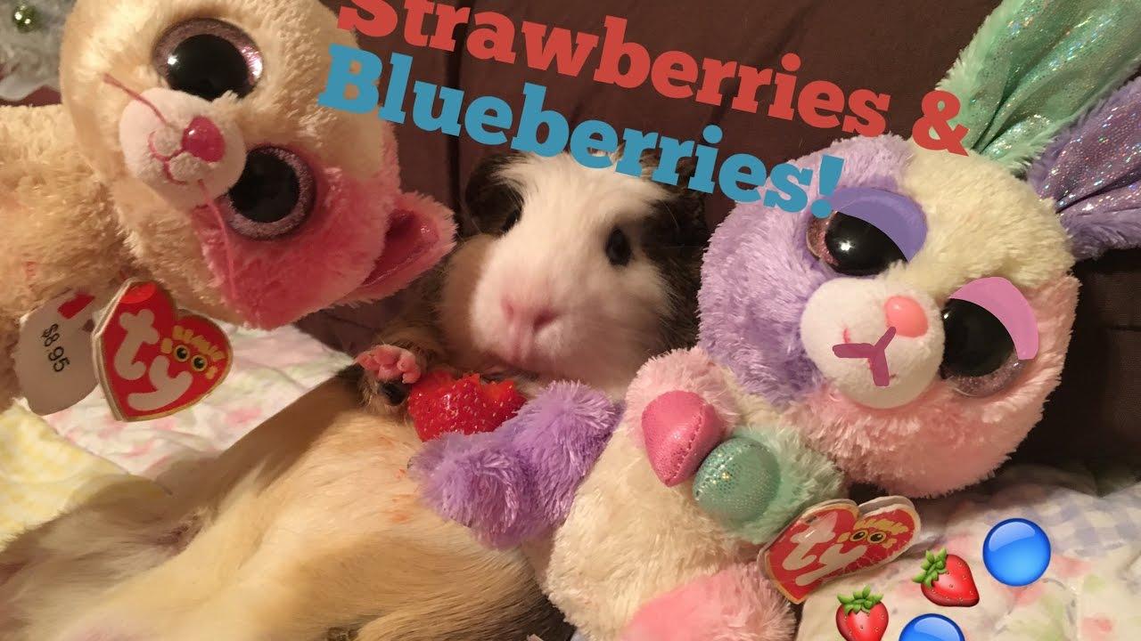 950e09fdc15 Beanie Boo s  Strawberries   Blueberries! - YouTube