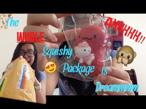 I GOT MY DREAM SQUISHY! II RARE SQUISHY PACKAGE