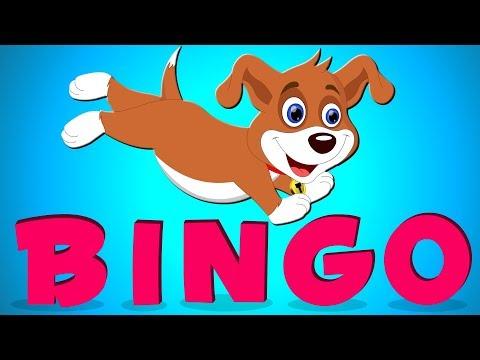 BINGO İngilizce Çocuk Şarkıları ile Türkçe   BINGO Song in Turkish Nursery   Balon TV   Bebek Şarkı