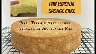Pan Esponja(Sponge Cake)Tres LechesTiramisu