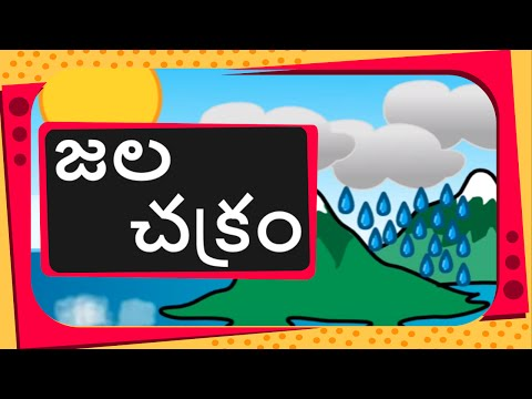 Science -  What Is Water Cycle and how rain occurs -  Telugu