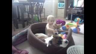 Worldwide Nanny Dogs End Bsl