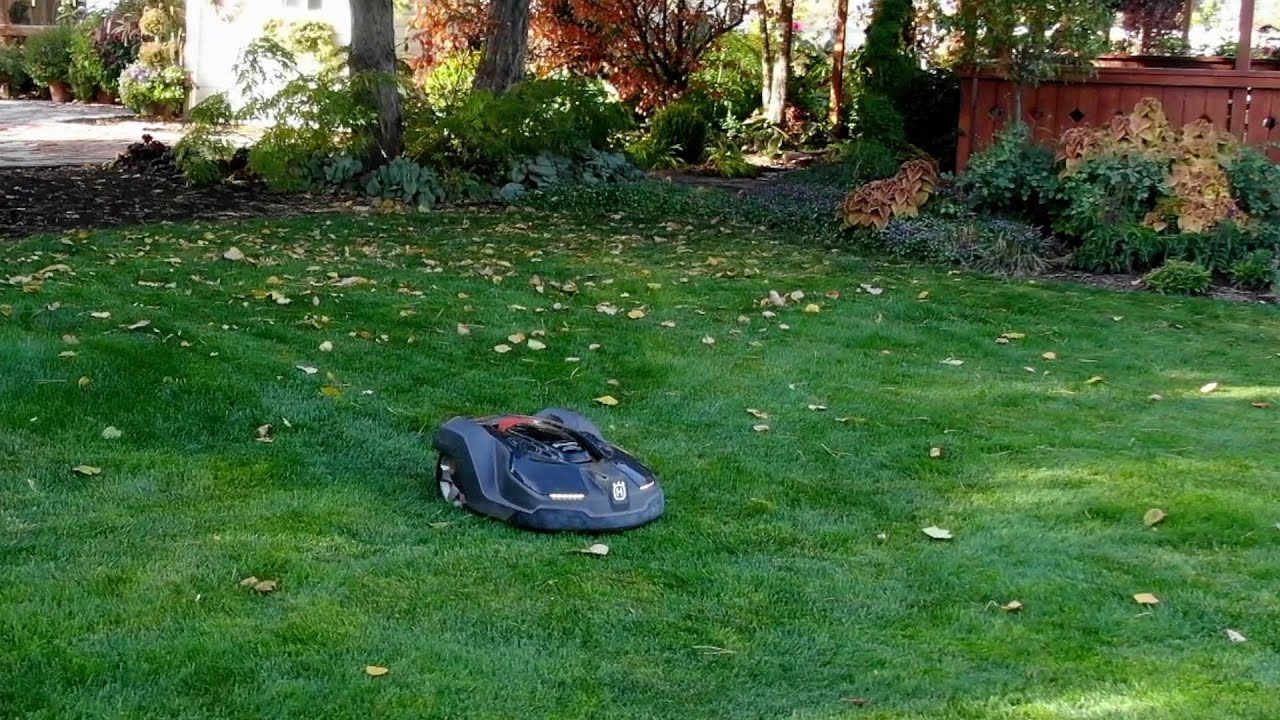 Testing an Automower! Is this the Future? 😀👍 // Garden Answer