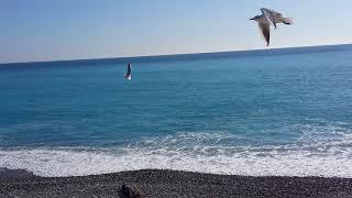 Море. Ницца. 08.02.2018