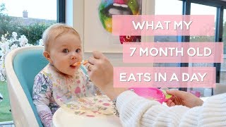 WHAT MY 7MONTH OLD EATS IN A DAY