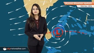 Weather Forecast for Dec 19: Rain in TN, Chennai; Fog in UP, Bihar