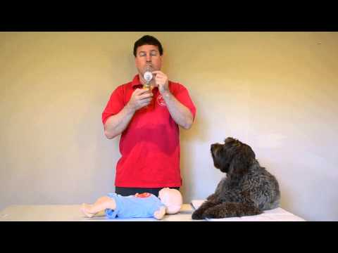 Mountain View BLS Renewal CPR Classes - How to use an infant BVM in a BLS course