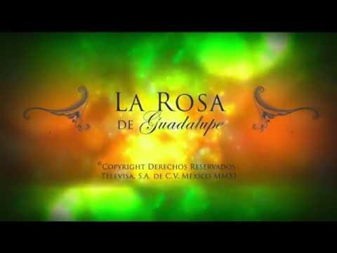 LA ROSA DE GUADALUPE - LA TEMPORADA