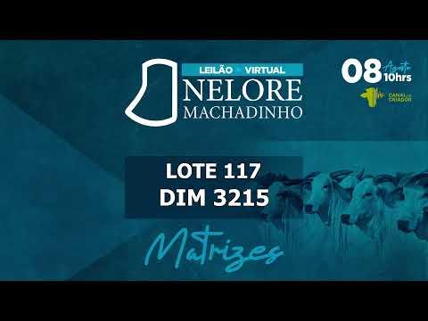 LOTE 117   DIM 3215