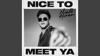 nice-to-meet-ya