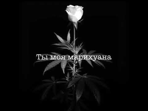 Ты моя марихуана mp3 лечение марихуаной видео