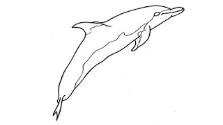 How to Draw a Dolphin / Как нарисовать дельфина(Drawing Channel - https://www.youtube.com/channel/UCaZm6IvtL9zNeDwQi571asA/videos Канал для рисования ..., 2015-04-20T16:19:12.000Z)