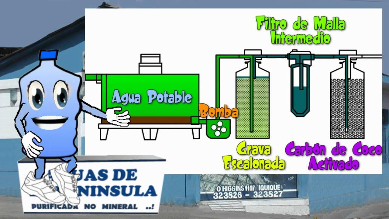 Peninsulin te ensea el proceso de purificacin del agua  YouTube
