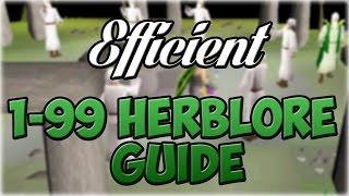 Oldschool Runescape EFFICIENT 1-99 Herblore Guide (300-600k/hr)