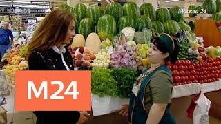Диетологи предупредили об опасности арбузной диеты - Москва 24