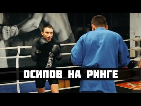 Петр Осипов на ринге