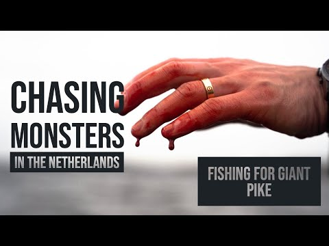 28kg Of Pike On Camera! 😱- Chasing Monsters In The Netherlands