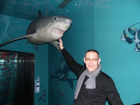 Океанариум  !  Акула ! Санкт петербург !  Мой Супер отдых в Планета Нептун !