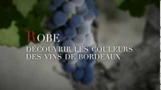 La robe et la palette de couleurs des vins de Bordeaux - #3