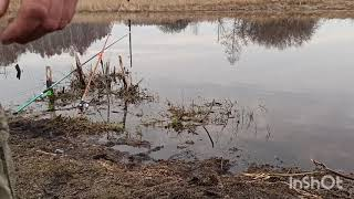 Рыбалка на реке Оша 02 05 21г Омская область