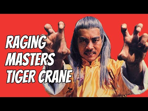 wu-tang-collection---raging-master's-tiger-crane-widescreen