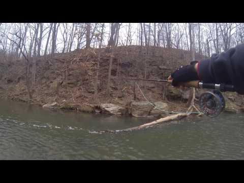 Fly Fishing At Peters Creek Pennsylvania