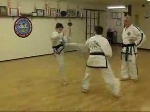 GTF Taekwon-Do Technical Free Sparring Match #2