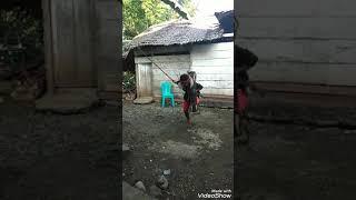Tradisi Umapos Suku Saluan-Loinang di Desa Hion Kabupaten Banggai