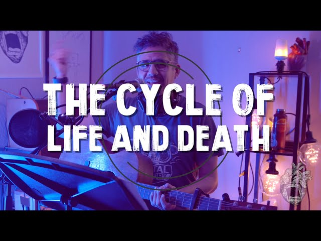 Cycle of Life and Death Acoustic