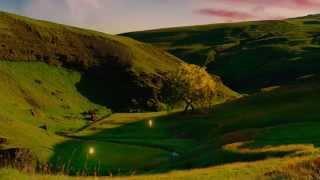 Отрывок из фильма Ной