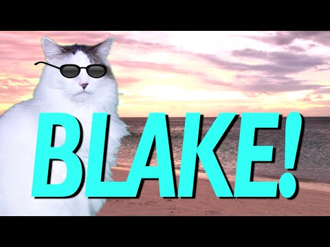 Happy Birthday Blake Epic Cat Happy Birthday Song Youtube