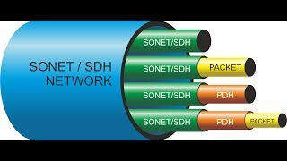 Networking : Evolution of SDH Technology